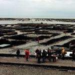 Les grandes marées en Bretagne